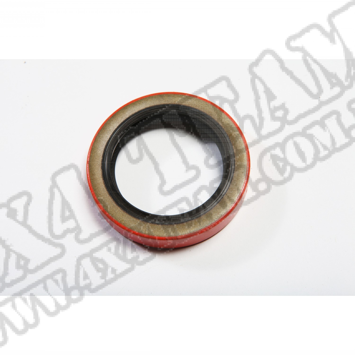 Rear Seal, GM 10 Bolt