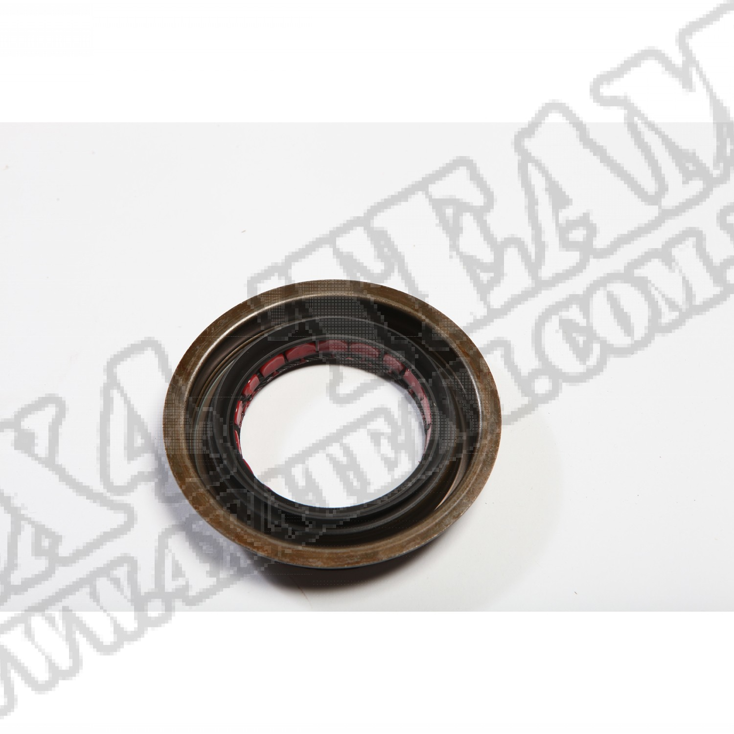 Pinion Seal, GM 14 Bolt