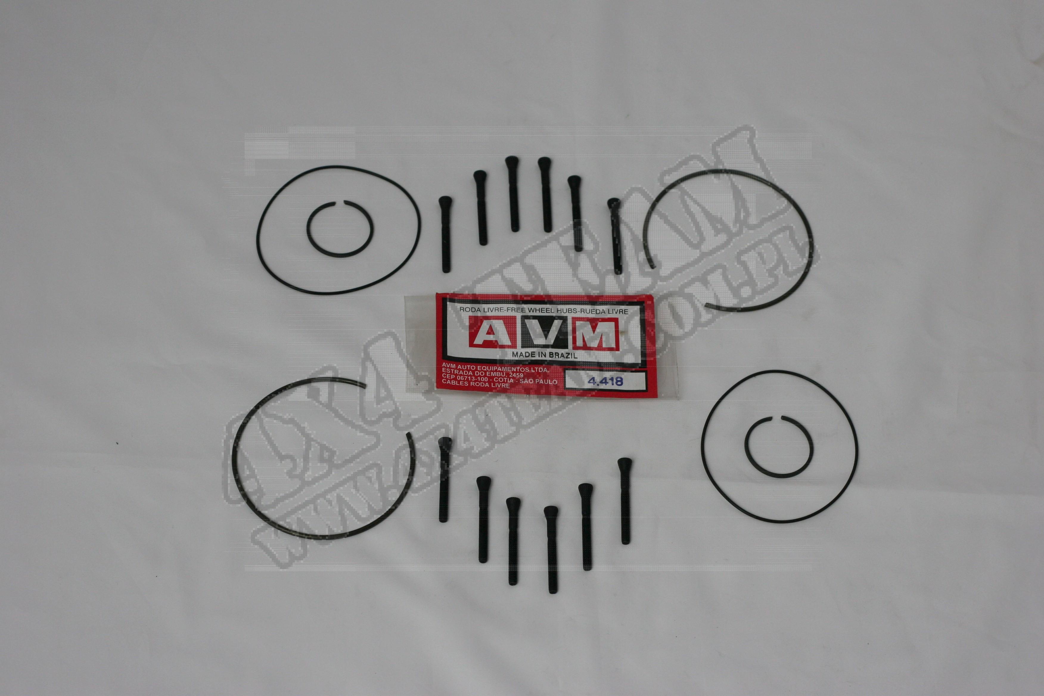 Zestaw serwisowy AVM 4.418