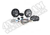 Fog Lamp Pair Kit 100W Blk
